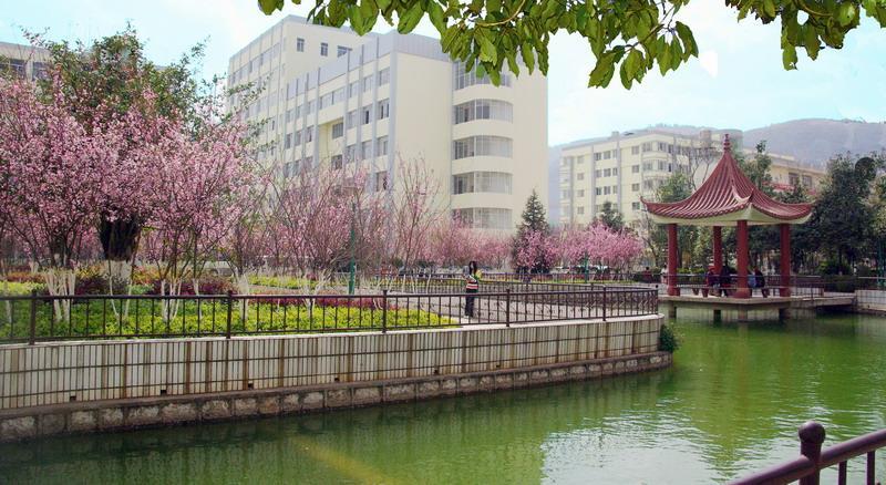 云南科技信息职业学院五年制大专